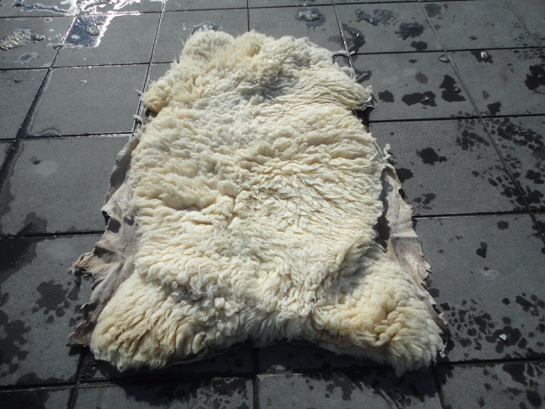 Natural Sheep Skin Animal Hide, Soft Sofa Seat