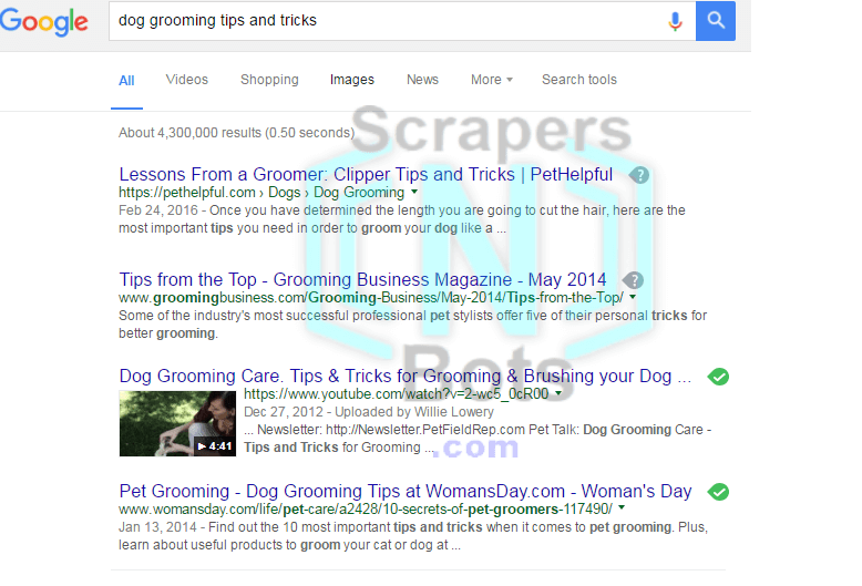 Google Search Results Usually Include Youtube Video Result In The Serp Keyword Tool Google Search Results Dog Grooming Tips