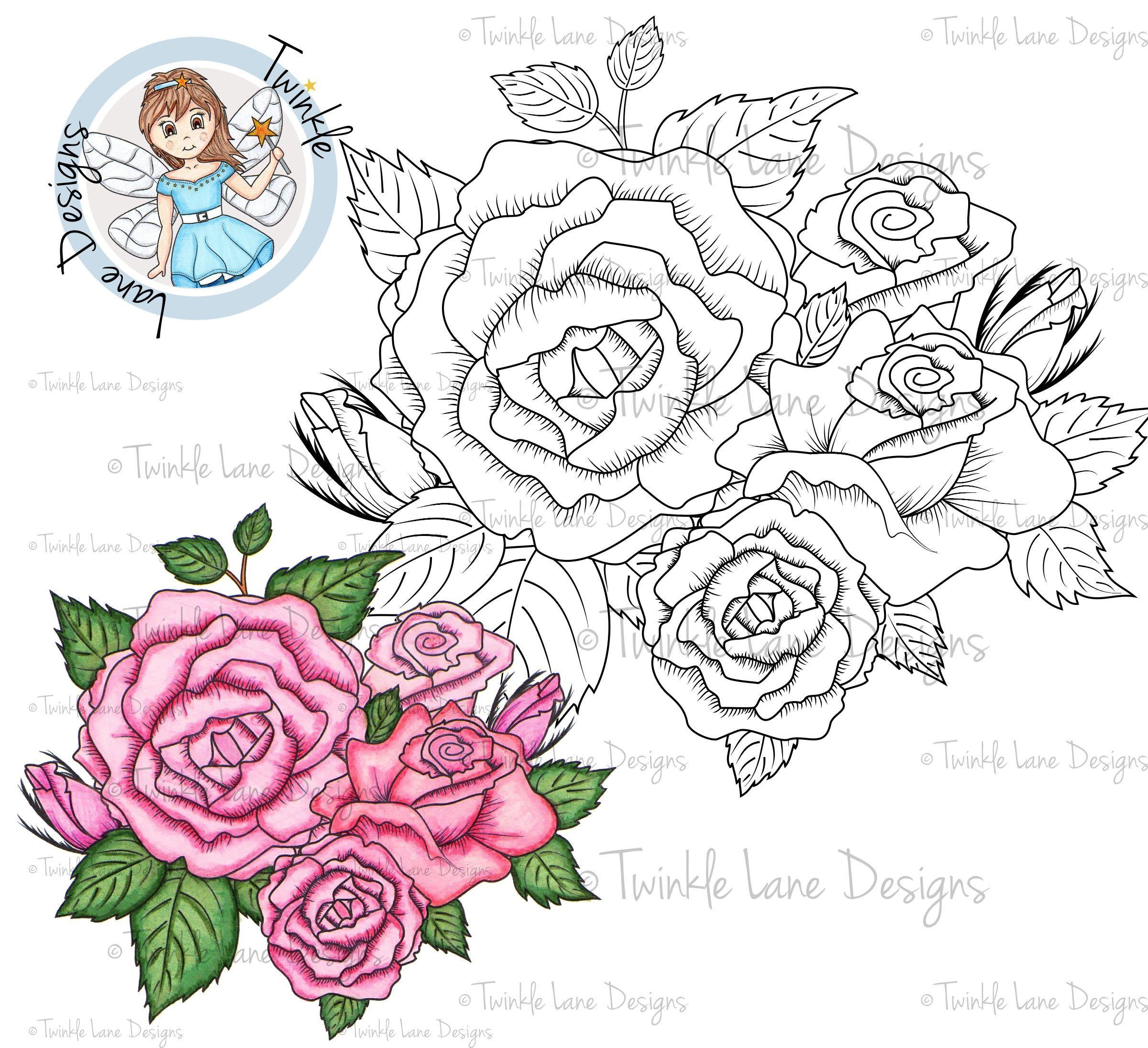 Rose, Digi Stamp, Rose Clipart, Flower Bouquet, Shrub, Roses, Adult ...