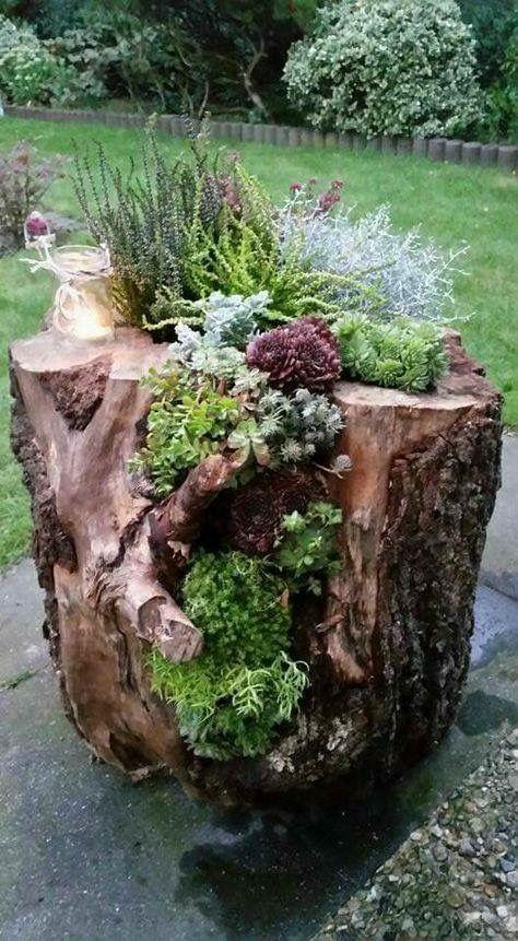 31 Easy and Cheap Design Garden Ideas #patioandgardenideas