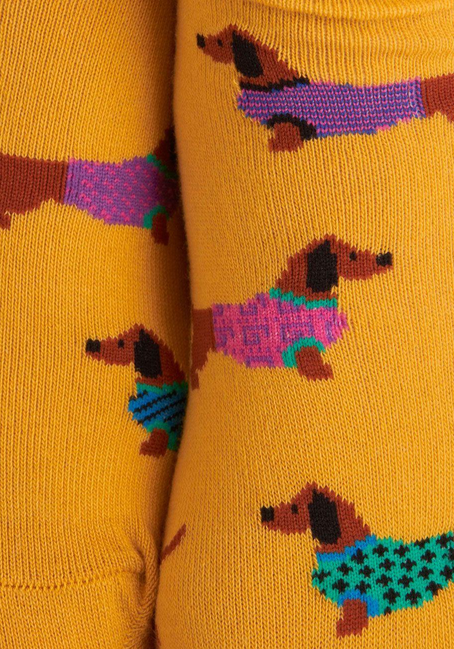 Gold Medal Wiener Dog Socks | Mod Retro Vintage Socks | ModCloth.com - Truly Trustworthy Tights In Chocolate Dog Socks And Wiener Dogs