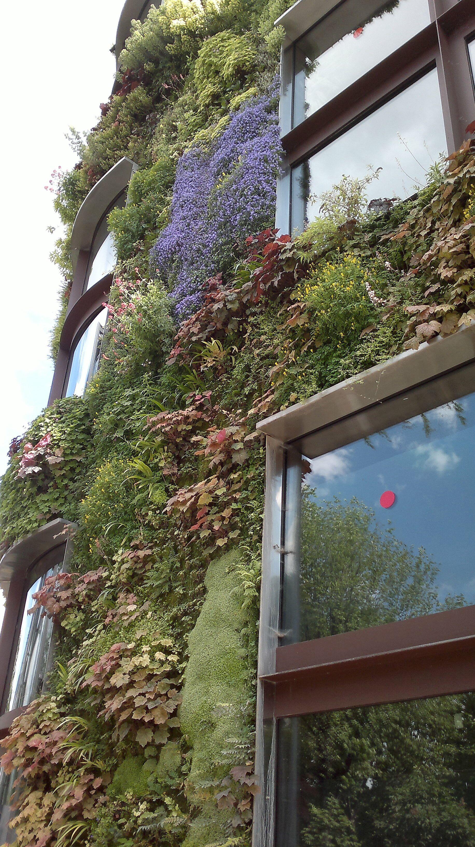 Vertical garden by Patrick Blanc, musée du Quai Branly, Paris | Lush ...