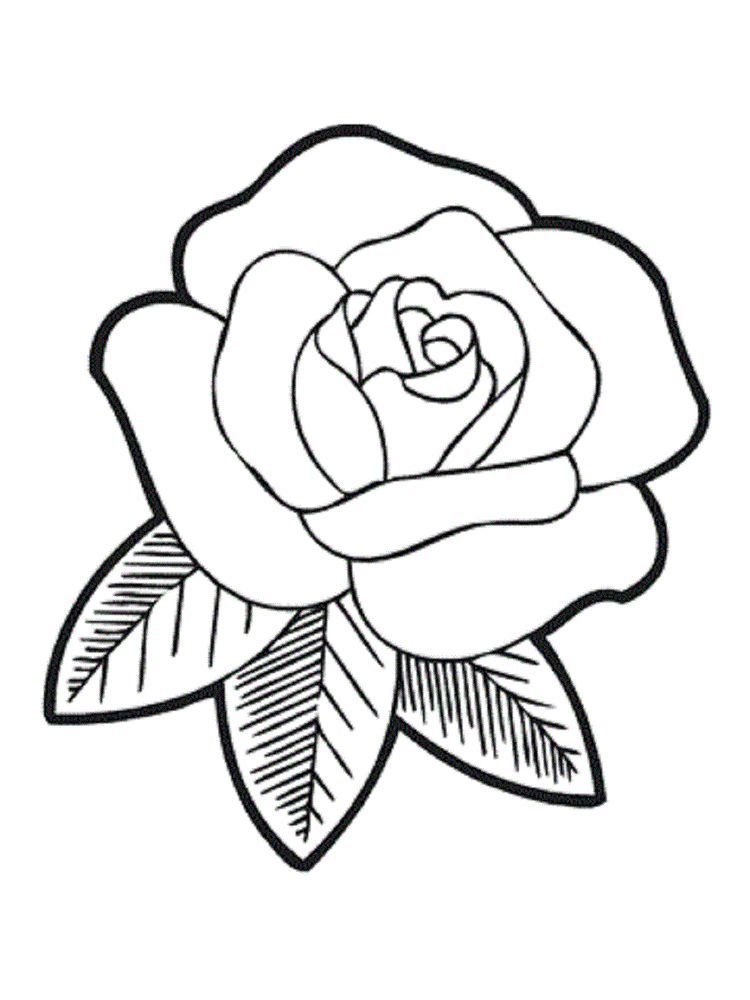Rose Coloring Pages Flowers Easy Flower Drawings Rose Drawing Simple Flower Drawing