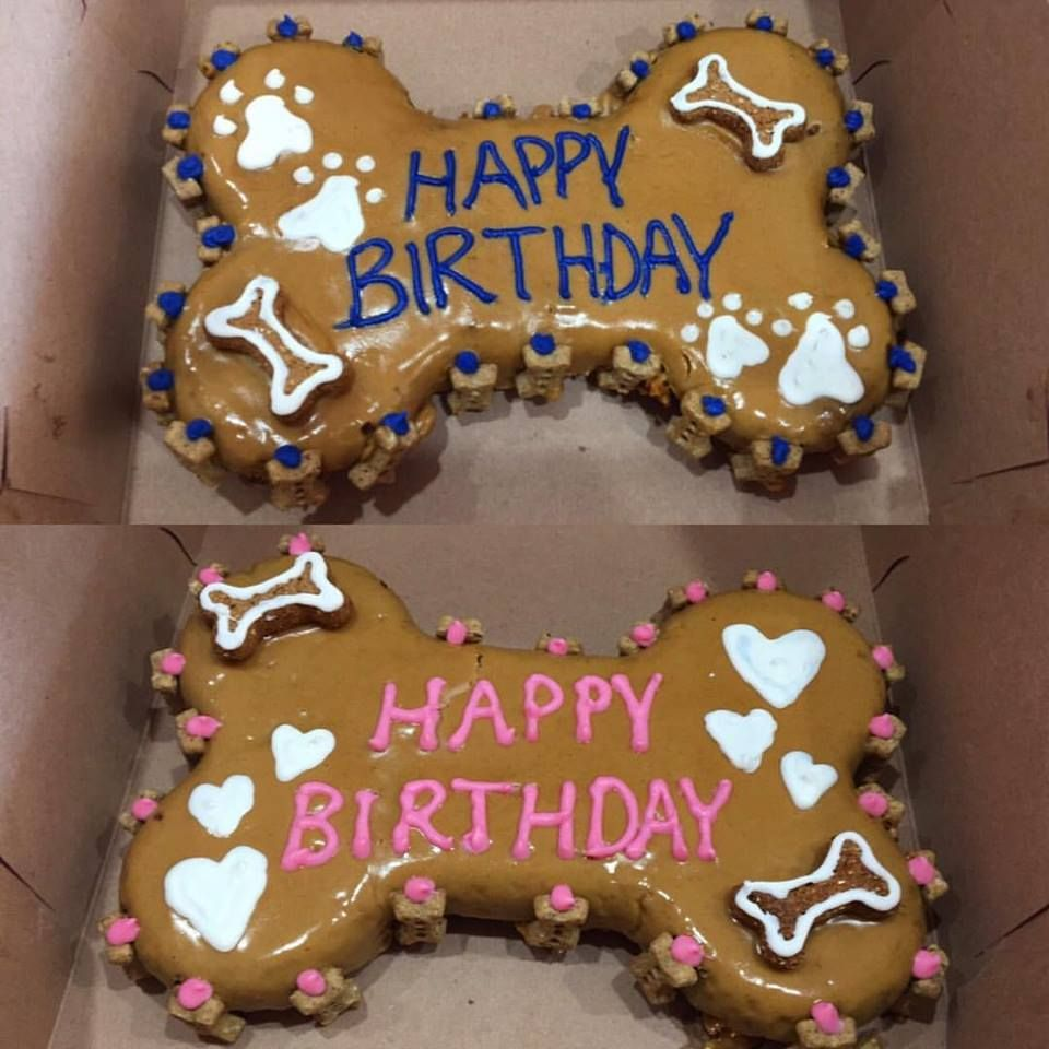 Celebrating A Special Birthday Woof Gang Bakery South Tampa Has Pawesome Cakes To Make Those Pups Feel Extra On Their Day