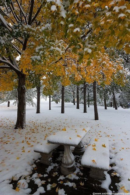 Winter couldn't wait on fall any longer:) So beautiful