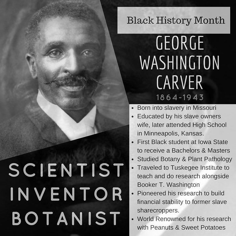 George Washington Carver I Renowned For Hi Research Into Alternative Crop To Cotton Which Would Enable Essay Outline Black History