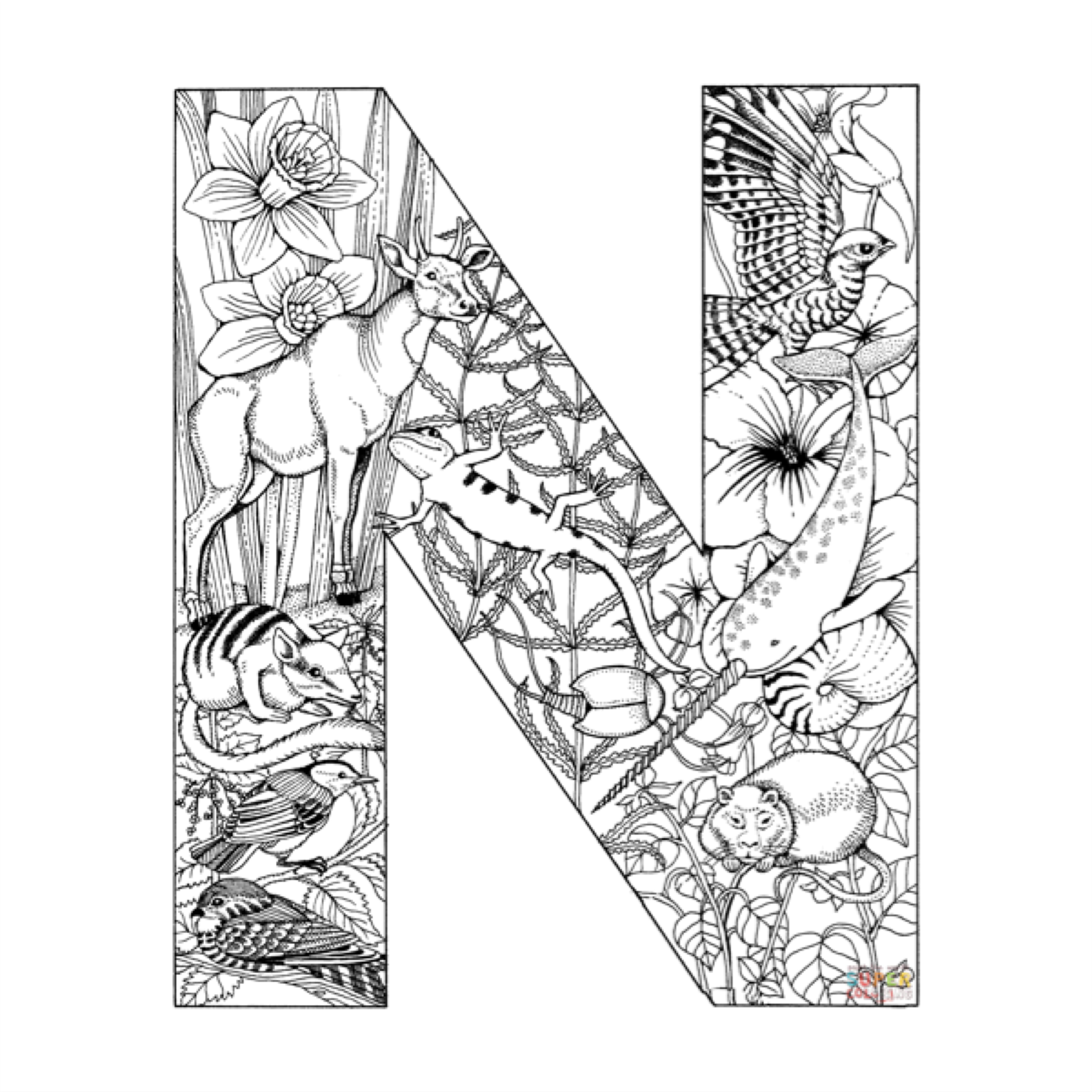 Pin By Czarina Nina On The Letter N Pinterest Fonts