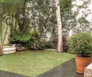 jardines pequeos de casas minimalistas Buscar con Google jardin