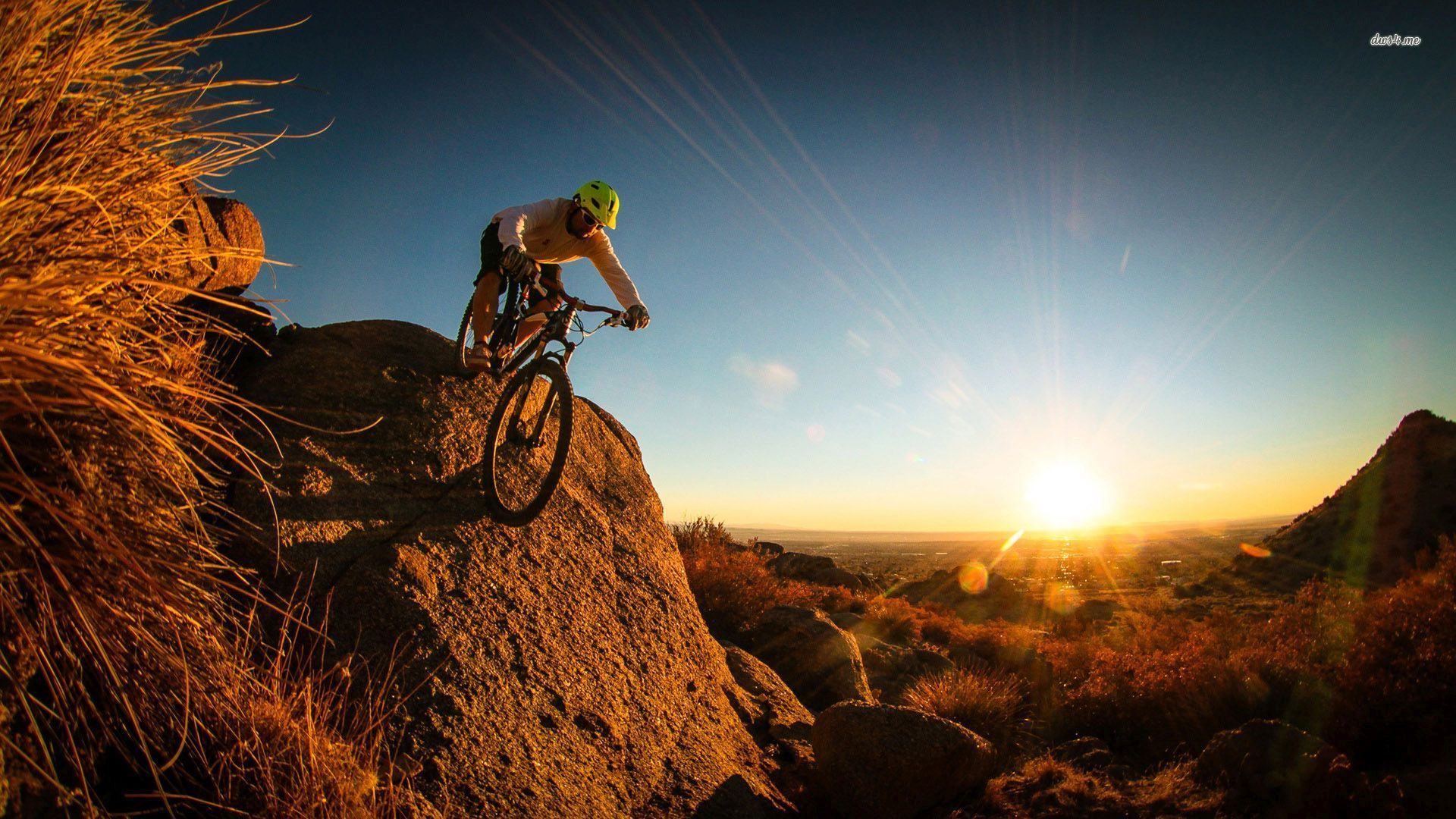 Mountain Road Bike Wallpapers: Wallpapers For > Fox Mountain Bike Wallpaper