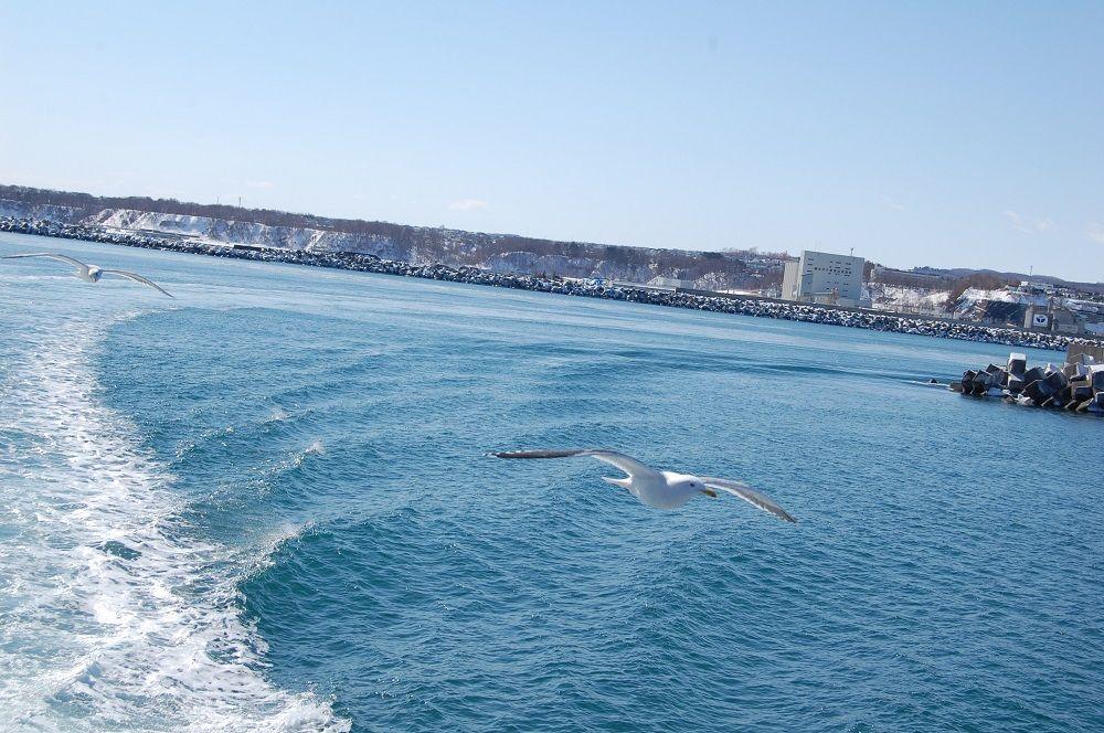 Drift Ice Sightseeing In Abashiri Hokkaido East Hokkaido