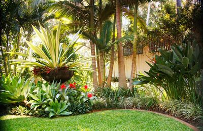 Pin by kathy lee on landscaping pinterest side yards garden gardens tropical garden designtropical workwithnaturefo