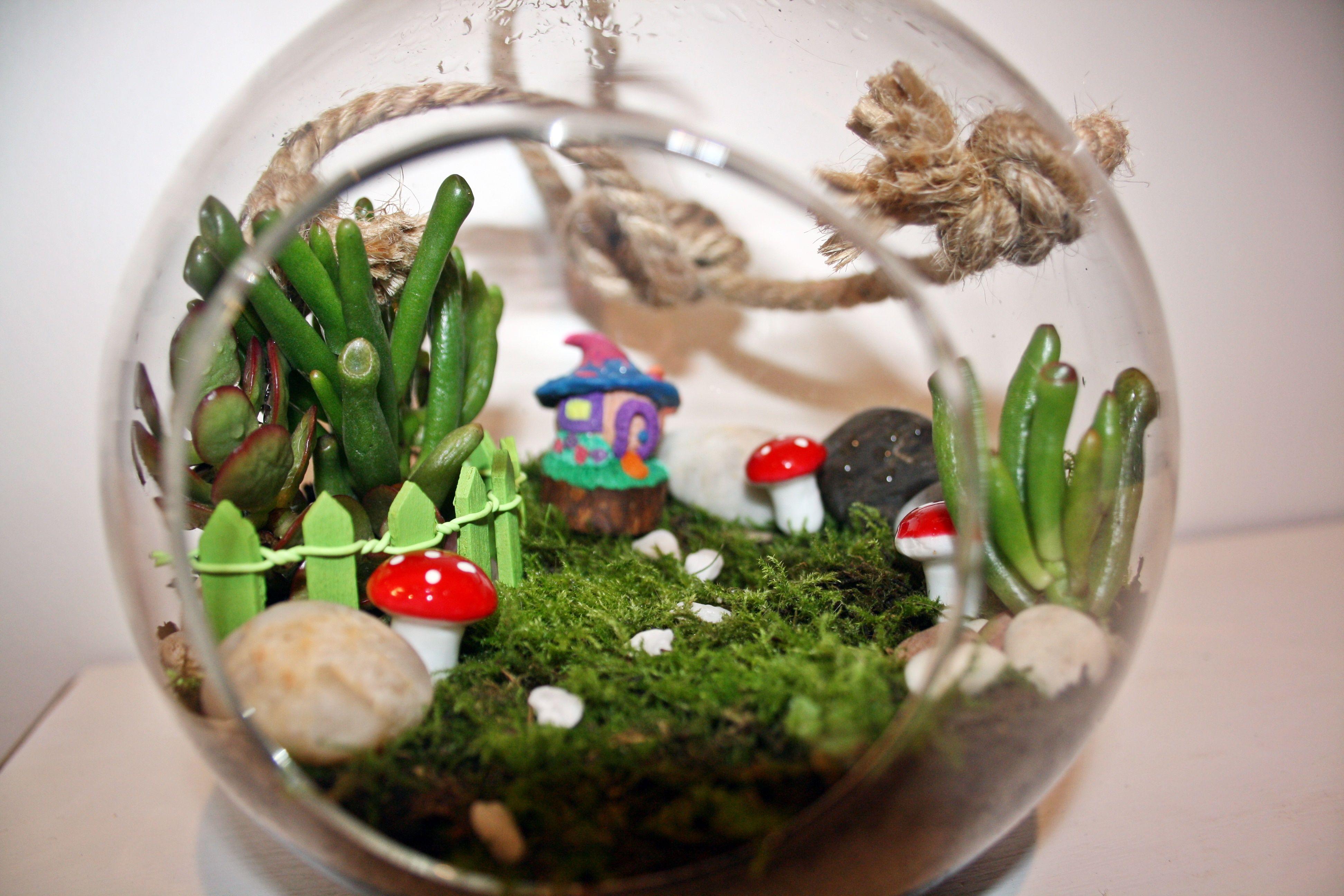 Custom Orders Fairy and Succulent Gardens