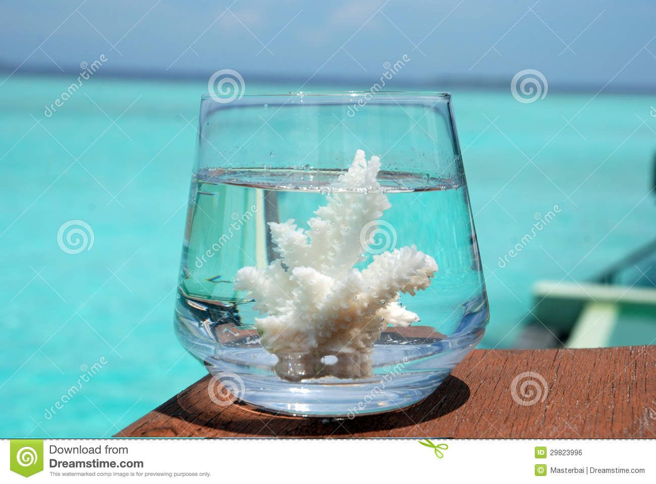 festa decoração coral mar - Pesquisa Google