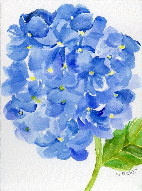 Book Cover Watercolor Flowers : Blue hydrangeas original watercolor painting flower