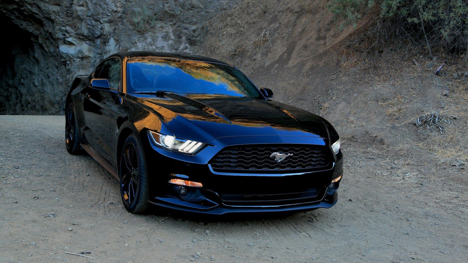 2015 Ford Mustang Wallpaper Black Image 111 Cars Pinterest