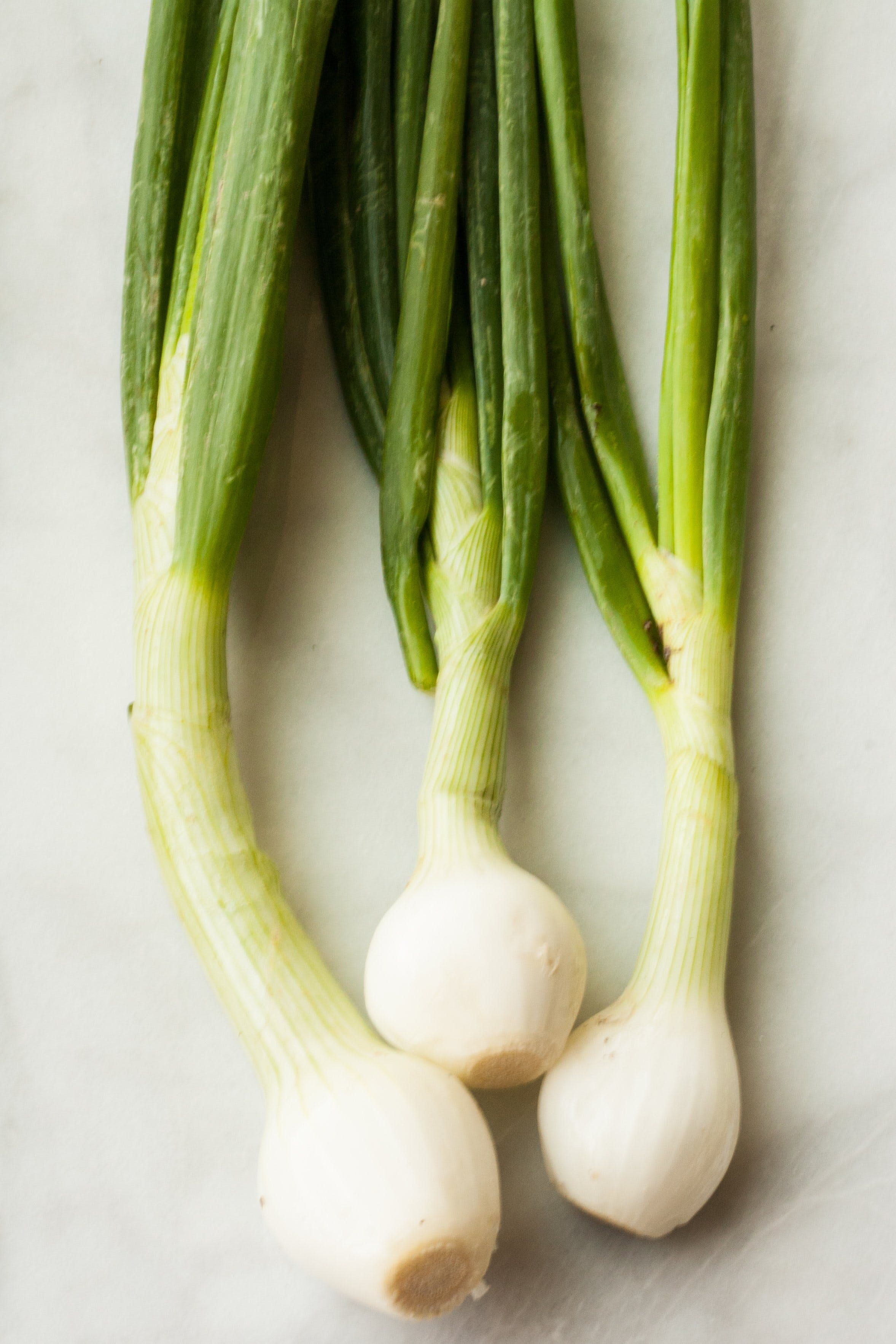 What S The Difference Between Scallions Green Onions And Spring Onions Spring Onion Green Onions Onion