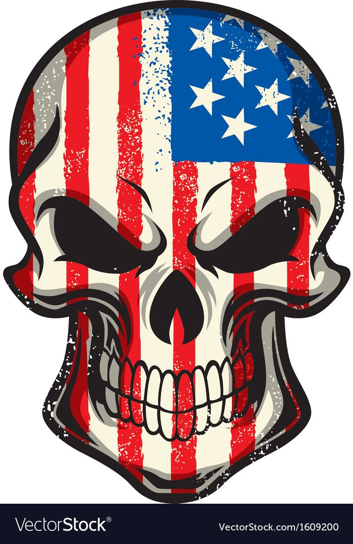 American flag painted on skull vector image on American