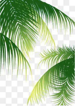 Fondo De La Hoja Imagenes Predisenadas De Fondo Fondo De La Hoja Publicidad Png Y Psd Para Descargar Gratis Pngtree Leaf Background Plant Leaves Leaves