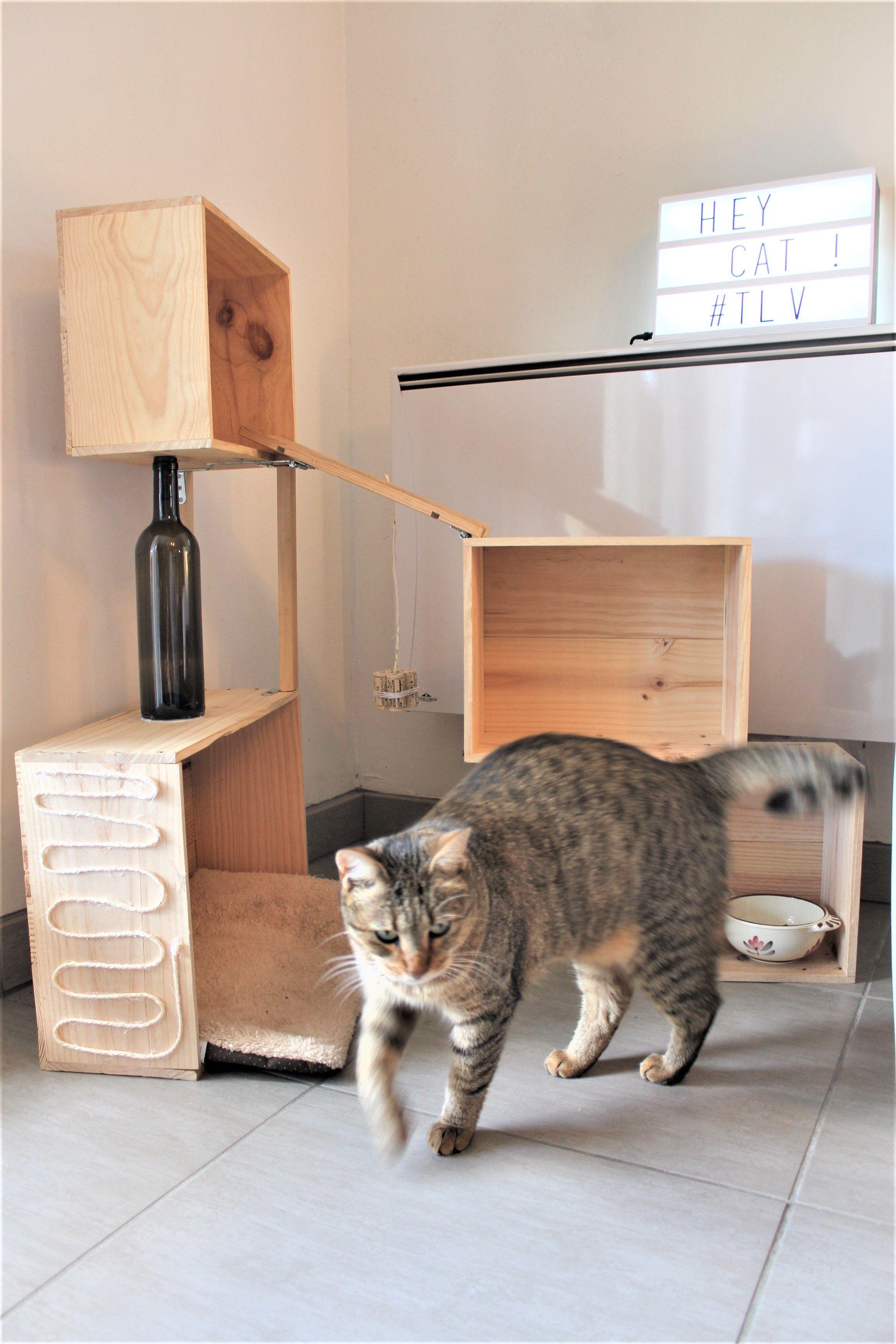 Comment Fabriquer Un Arbre À Chat cat toy tree arbre chat diy wine box wood caisse vin bois
