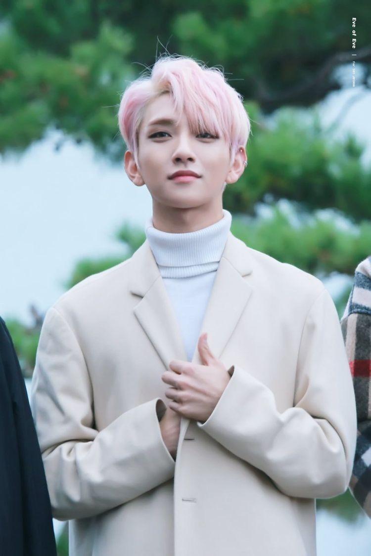 I CANT #Jisoo #Joshua #Seventeen #svt ♡ | Joshua seventeen, Jisoo  seventeen, Seventeen memes