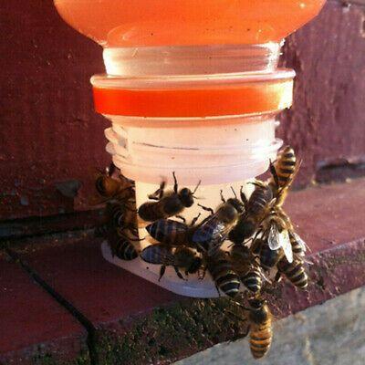 Beekeeping Bee Cage Equipment Accessory Beekeeper Hive Swarming New Durable