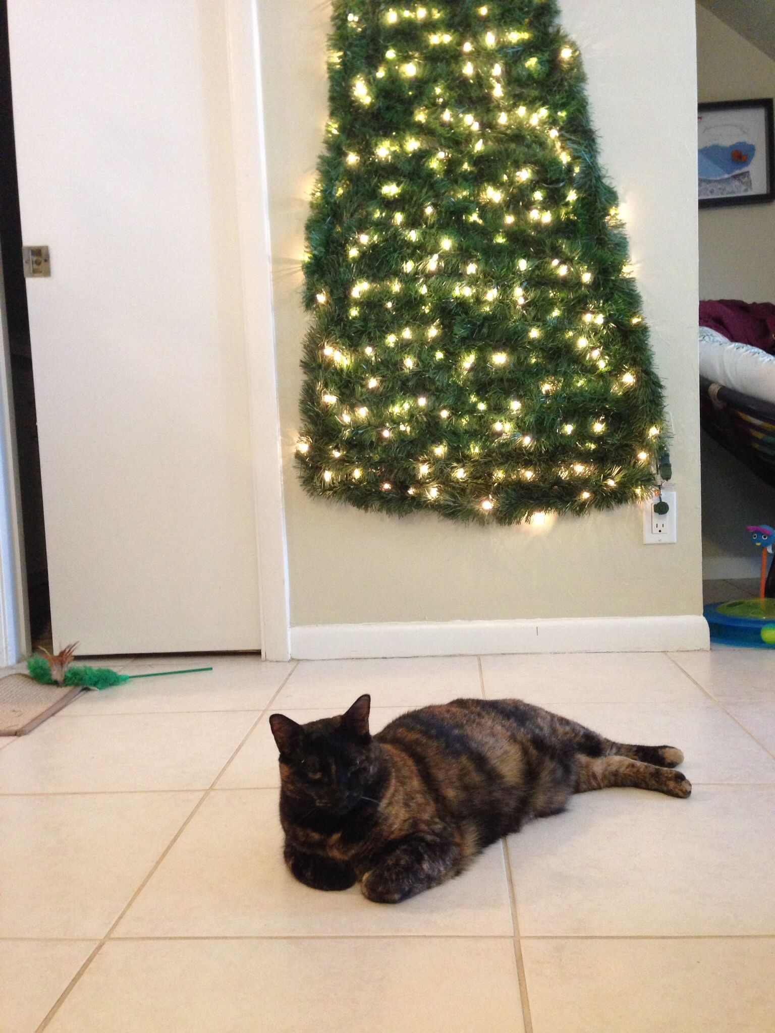 My Cat Proof Christmas Tree ) #Christmastree #Catproof #Lol