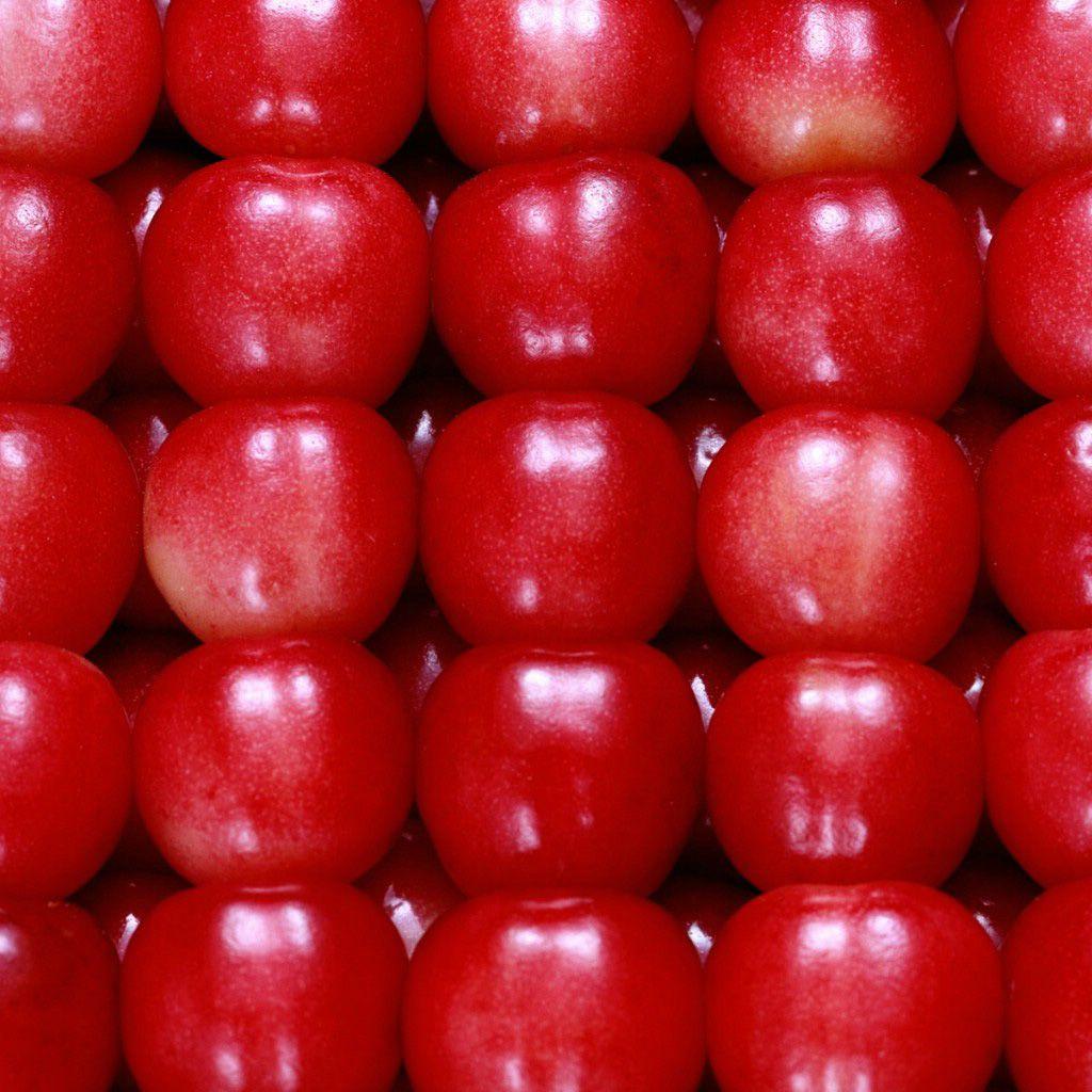 Fruit apple wallpaper - Full Hd Apple Hd Wallpaper Free Download