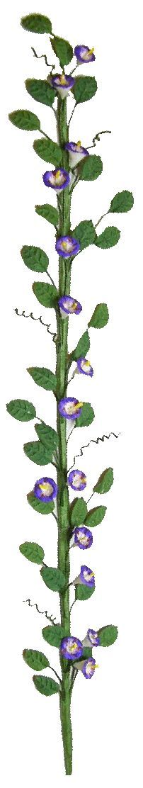 "Morning Glory Vine  $5.40  ALL TRAILING VINES BENDABLE TO FIT YOUR PROJECT  TO FIT YOUR 1"" SCALE PROJECTS    8"" LONG"