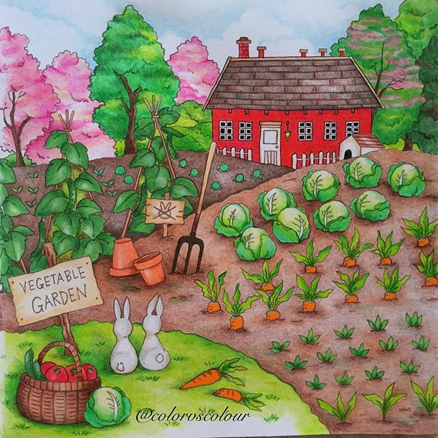 Vegetable Garden From Romantic Country Adult Coloring Book By Toothpick Artist Eriy Colored Instagram Photo Colorvscolour Via Ink361