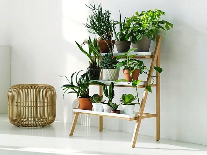 Space Saving Stepladder Plant Stands Gardenista Plant Stand Indoor Diy Plant Stand Diy Plants