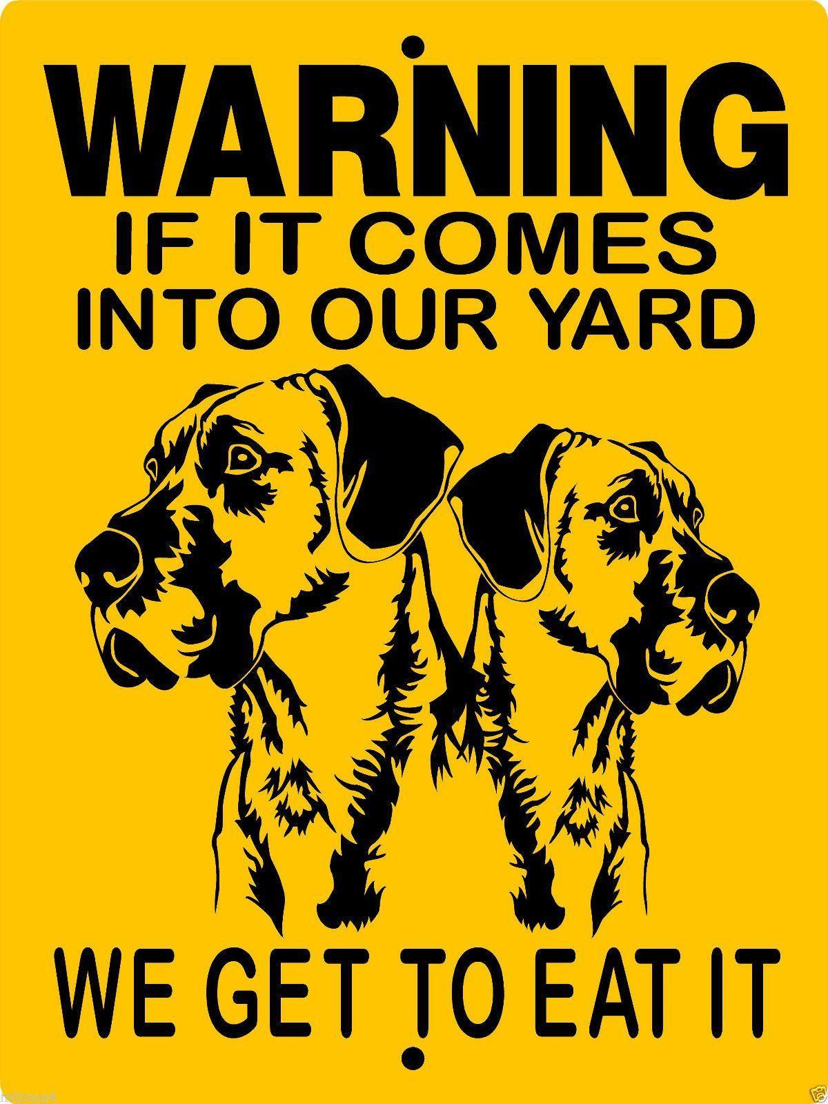 Great Dane Aluminum Dog Sign 2652gd2 Great Dane Dogs Dane Dog