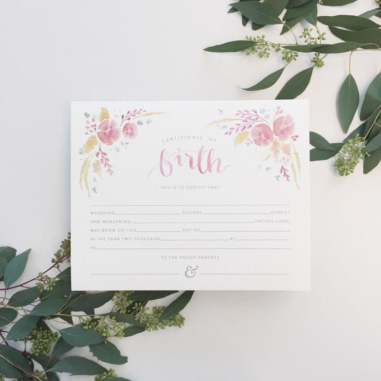 heirloom watercolor birth certificate by Sable and Gray