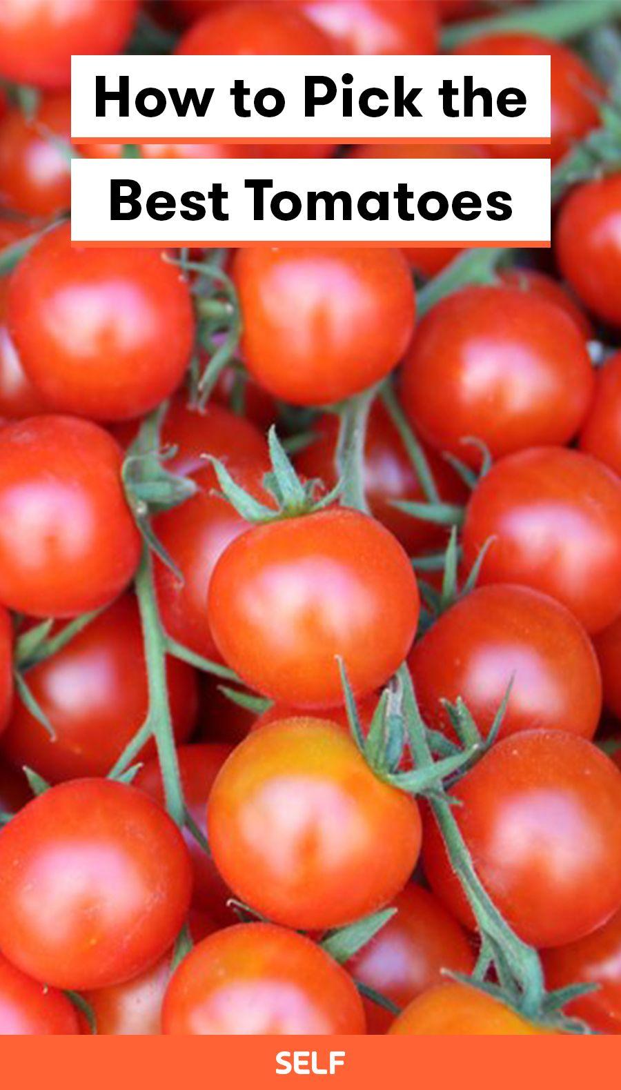 How To Pick The Best Tomatoes Tomato Tomato Season Tomato Farming