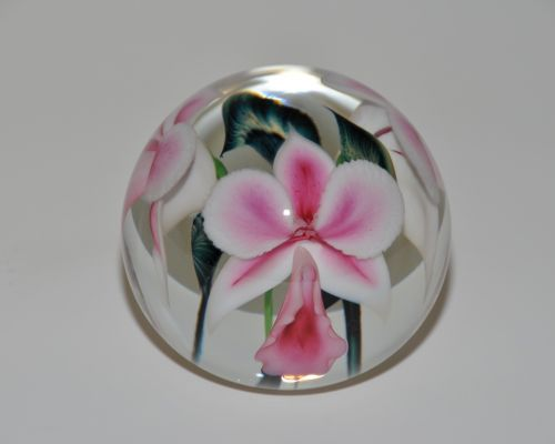 White Pink Blush Orchid Paperweight by Lotton Studios. American Made. See the designer's work at the 2015 American Made Show, Washington DC. January 16-19, 2015. americanmadeshow.com #paperweight, #orchid, #flower, #glass, #americanmade