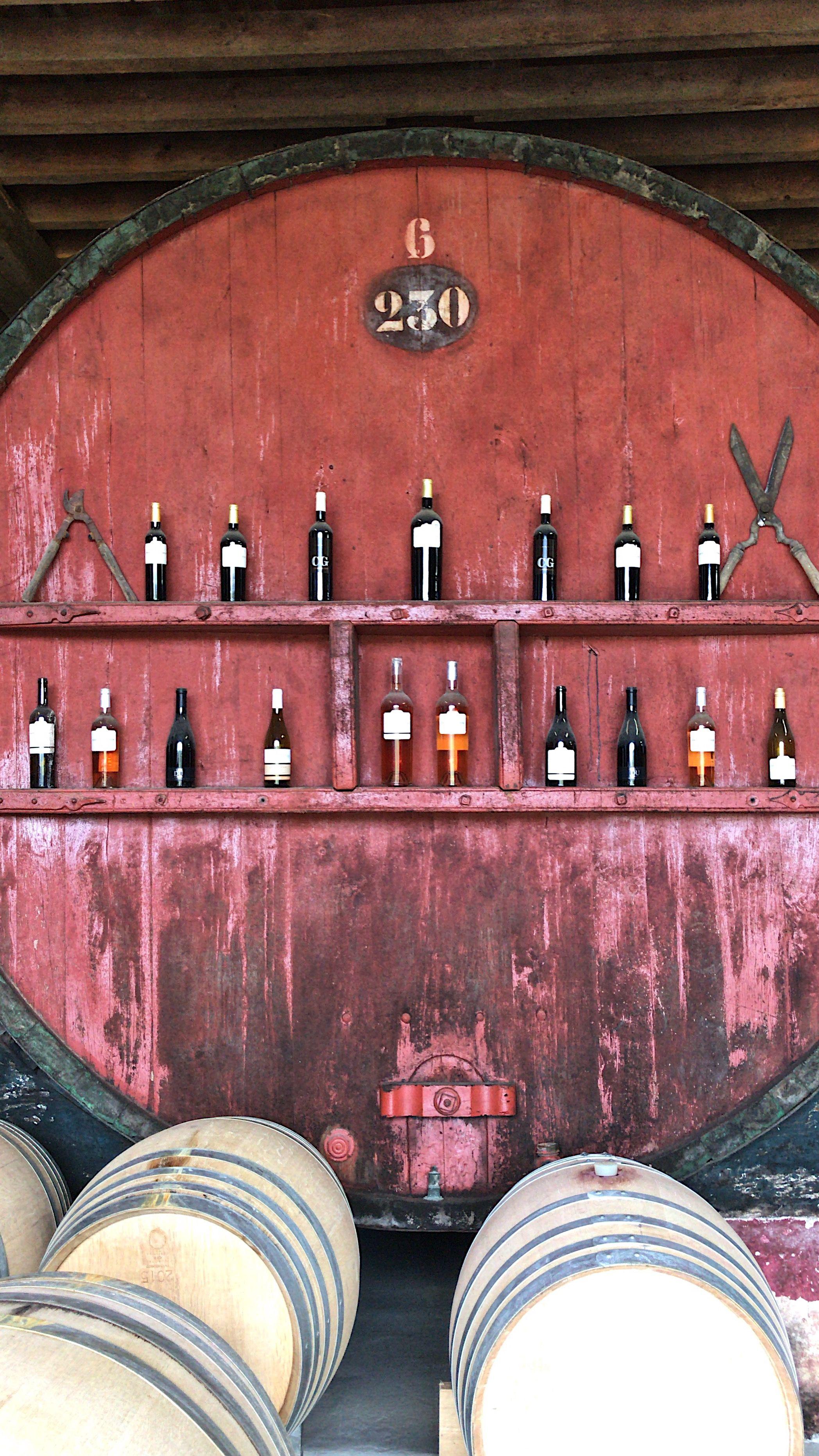 Wine Tasting At Chateau De Guilhem Malvies South Of France South Of France France Travel Guide France Travel