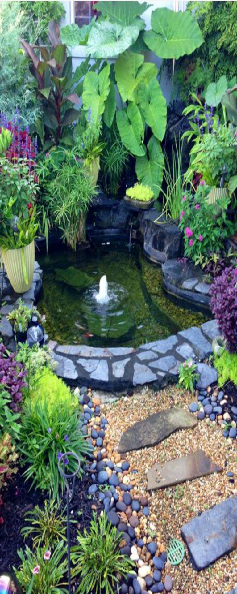 Pin by patricia ritterson on water garden ponds garten garten deko garten ideen - Wasserteich im garten ...