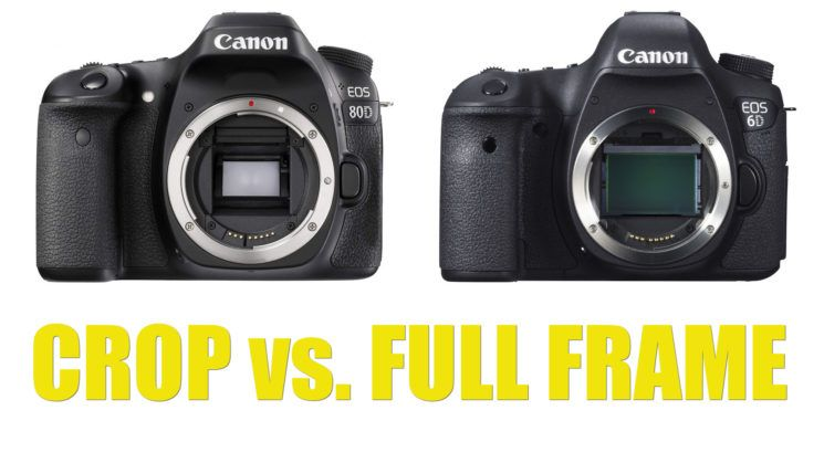Full Frame Vs Crop Sensor Is It Really Worth Switching To Full Frame Diy Photography Diy Photography Full Frame Sensor Full Frame
