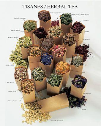 Beautiful healing tea herbs
