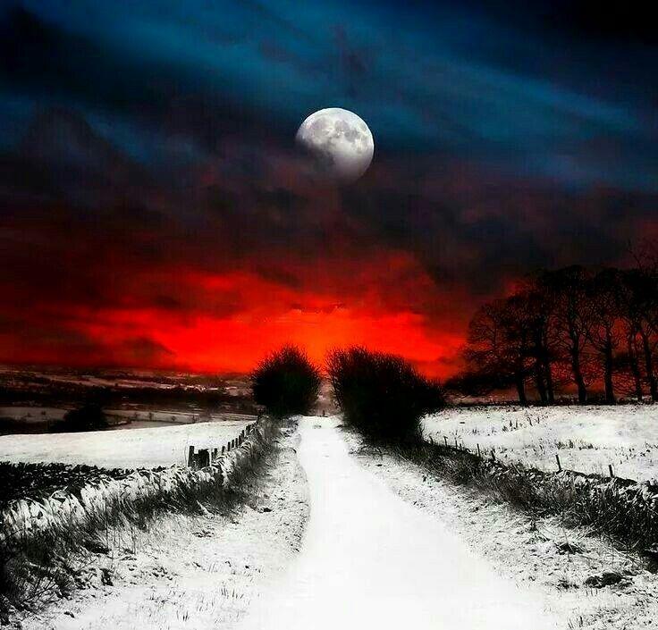 Красивые картинки полнолуние зимой в лесу месте