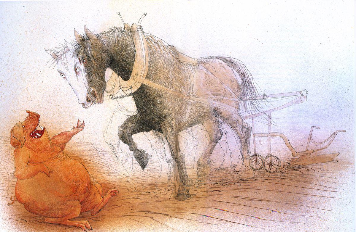 Google Image Result For Https I Pinimg Com Originals 9e 6b 2d 9e6b2d7bf8c4067088d03ff6ff916825 Jpg In 2020 Farm Animals Ralph Steadman Animals