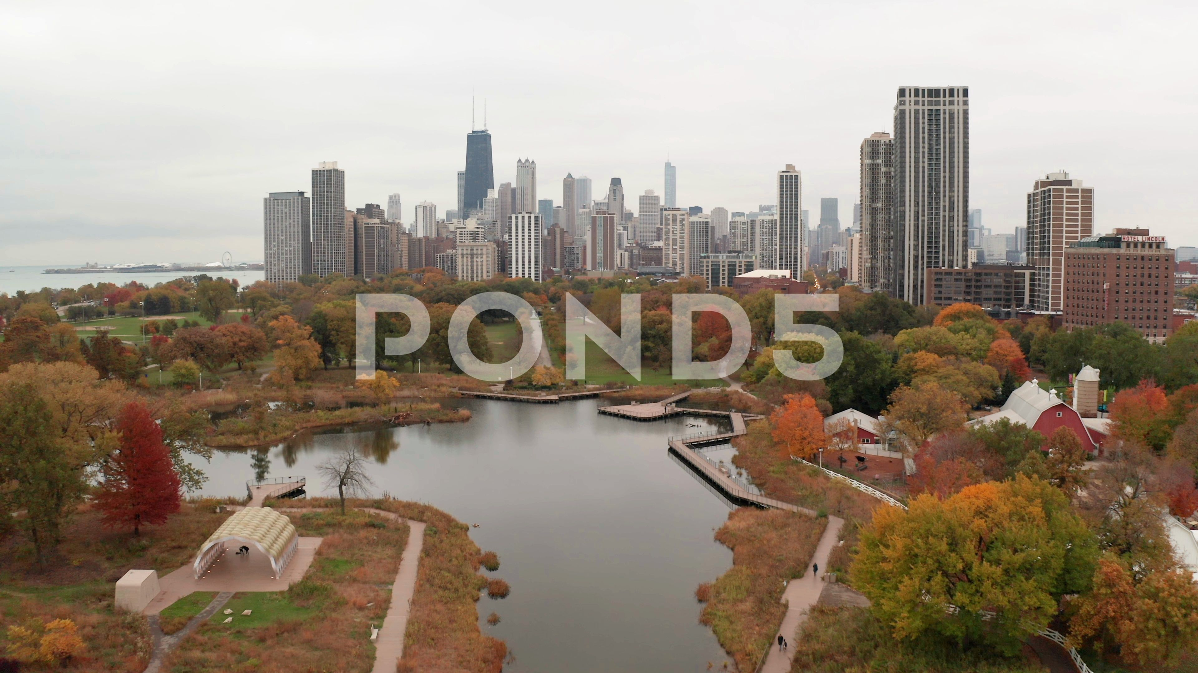 Chicago Downtown Aerial Fall Autumn Foliage Buildings Drone Flying Skyline Stock Footage Ad Fall Autumn Foliage Chicago In 2020 Downtown Chicago Fall Foliage Aerial