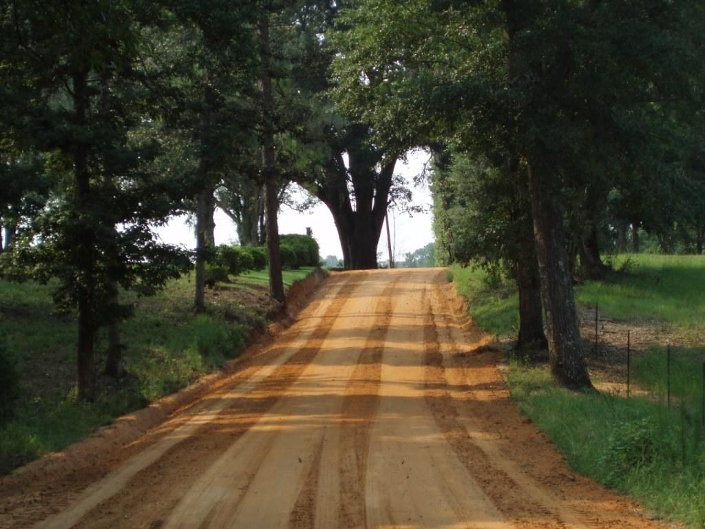 11 Country Roads In Georgia For A Scenic Drive |Georgia Country Roads