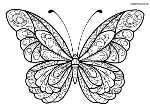 Schmetterling Malvorlage Muster Malvorlagen Ausmalbilder Ausdrucken