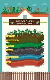 Raise the Roof How to Plant a Rooftop Garden Good article Raise the Roof How to Plant a Rooftop Garden Good article This image has get 3 repins Author GLENYS Large vessel...