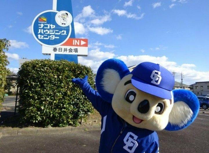 ドアラ おしゃれまとめの人気アイデア Pinterest Watanabe ドアラ