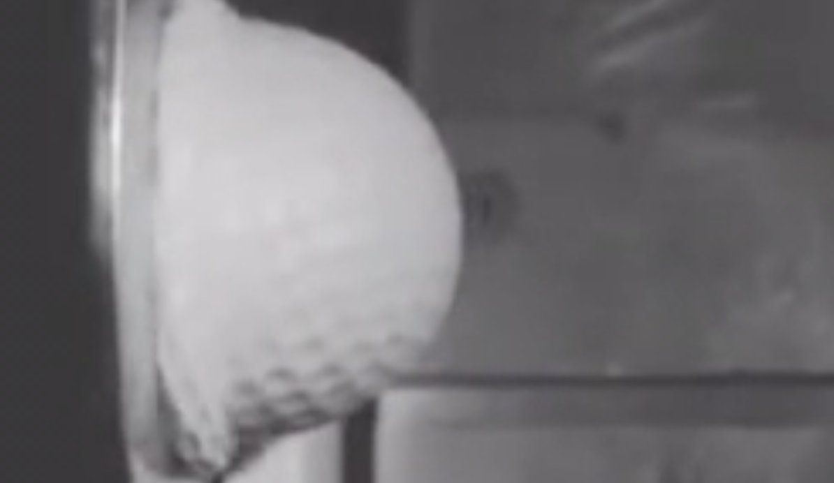BoingBoing: Golf ball looks like silly putty when it hits a steel plate at 150mph. https://t.co/pNzZ0Gjyqo https://t.co/Cgab2f7KiC