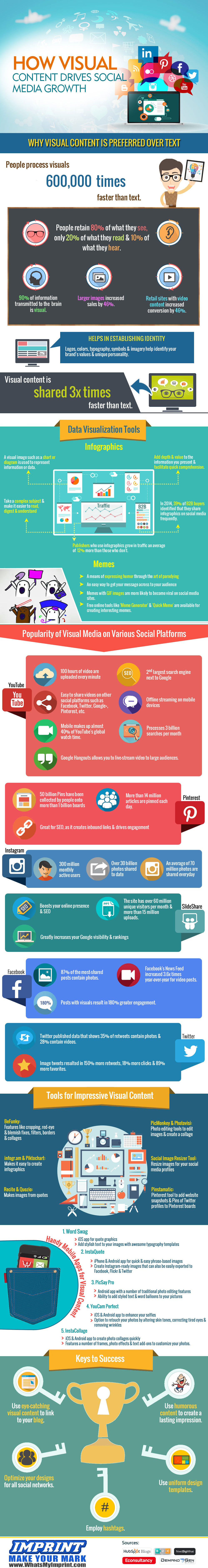 Visual Infographic fpr Social Media Growth http