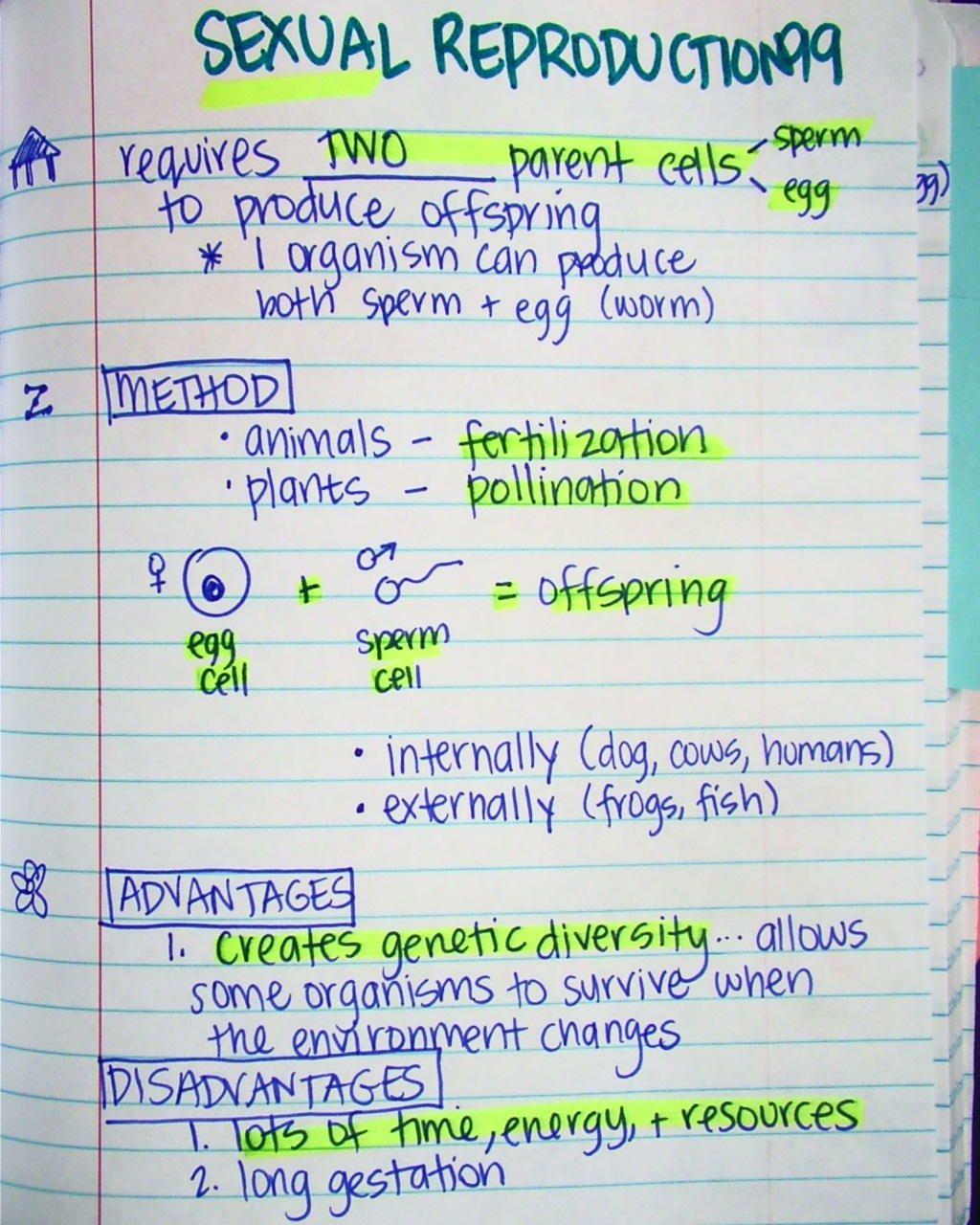 Science Gentics Ged Prep Worksheet