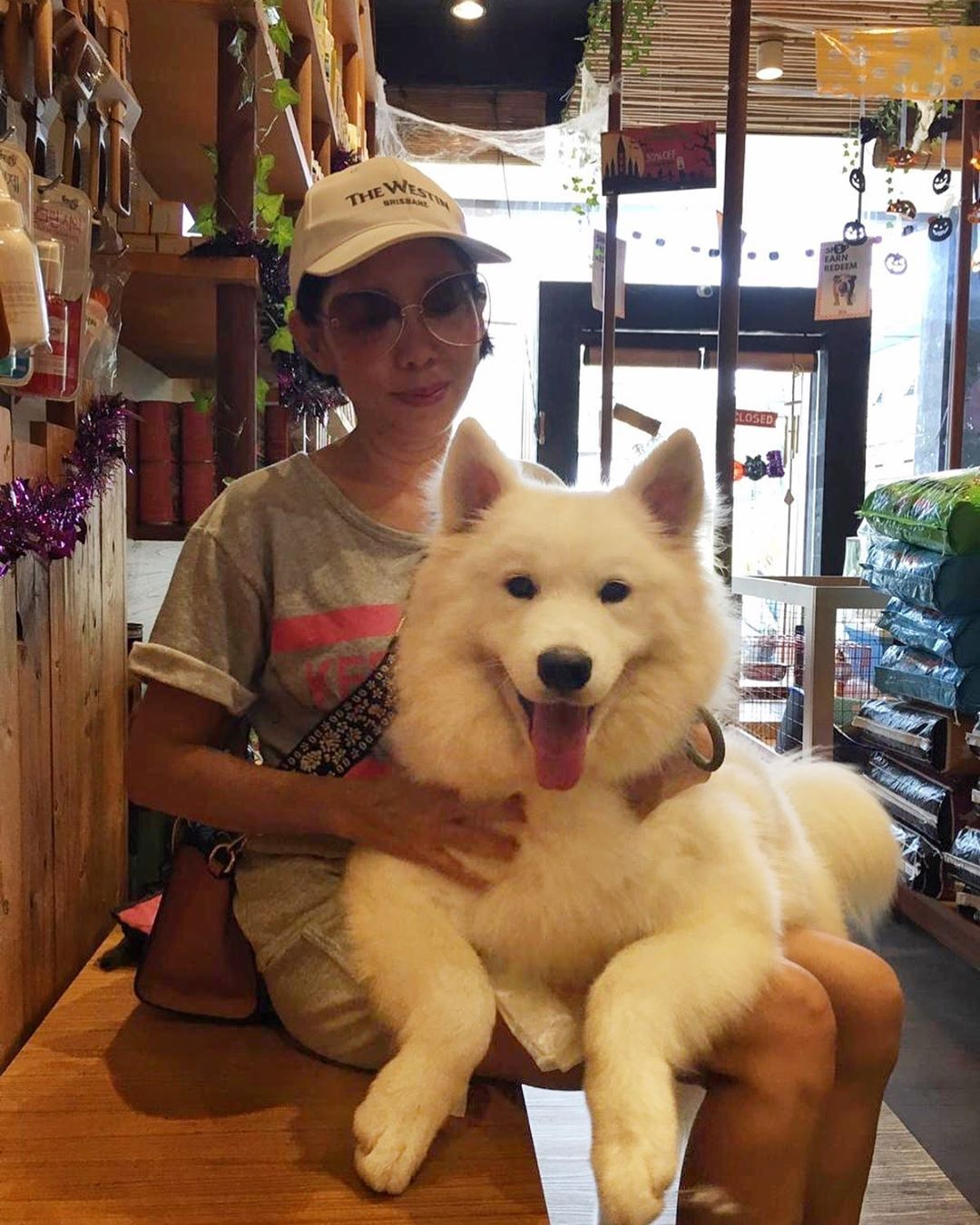 Whos Feeling Fresh Today Call In To Book Your Grooming Appointment With Us Bali Pet Island Pet Shop Affiliate Link Pets Pet Shop Pet Supplies