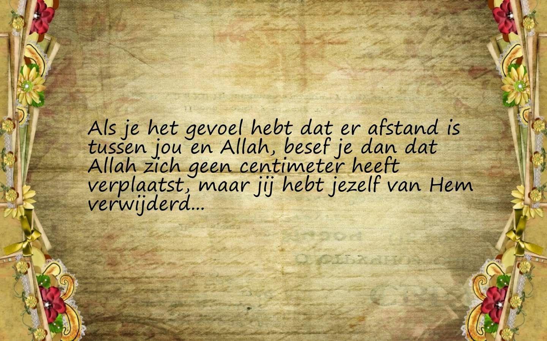 Citaten Uit De Vliegeraar : Citaten en wijze woorden uit de islam nederlandse quotes